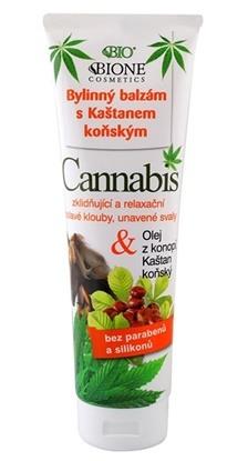 Obrazek BIONE COSMETICS Maść końska Cannabis z kasztanowcem