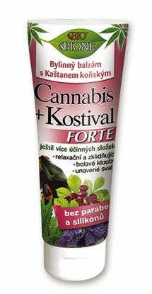Zdjęcie Maści końskiej Cannabis + Żywokost Forte marki Bione Cosmetics